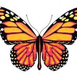 Let the karma go and let your inner butterfly emerge!  Time for lift off!